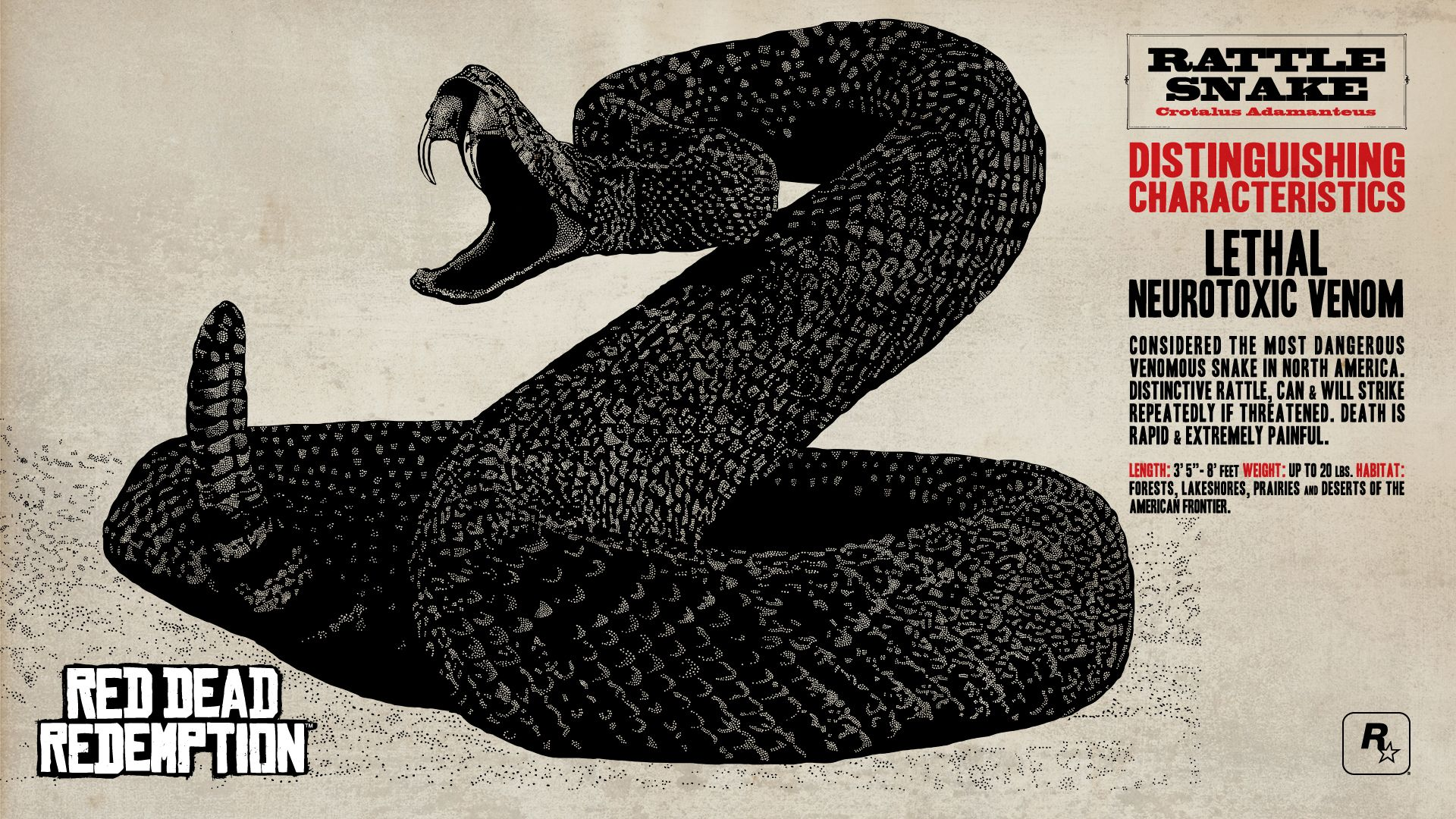 Red Dead Redemption Concept Art Rattle Snake 蛇