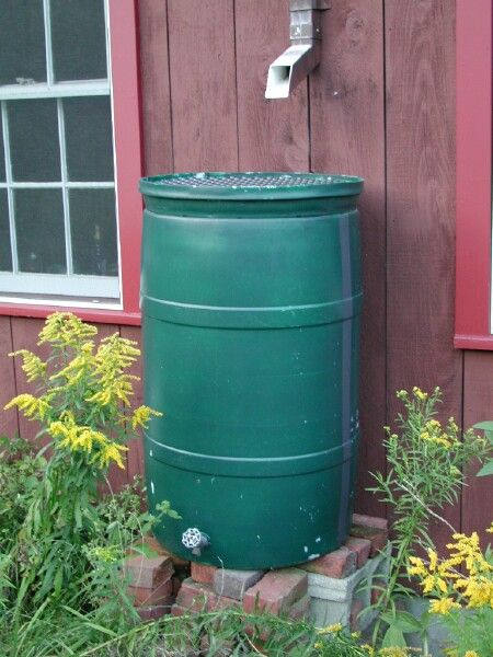 How To Build Your Own Rainbarrel Rainwater Cisternliving Off Gridwater Barrelrain