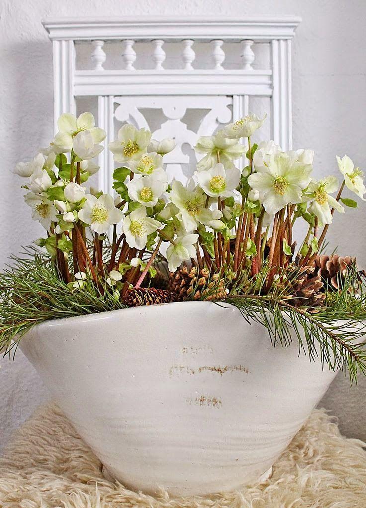 dream gardens: Jarné kvetinové dekorácie