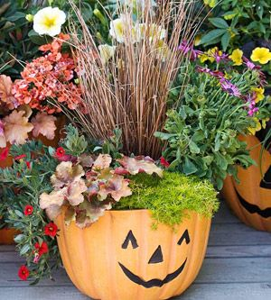 Holidays Halloween · Have Your Kids Help You Get Your House Fall Inspired  With This DIY Pumpkin Planter