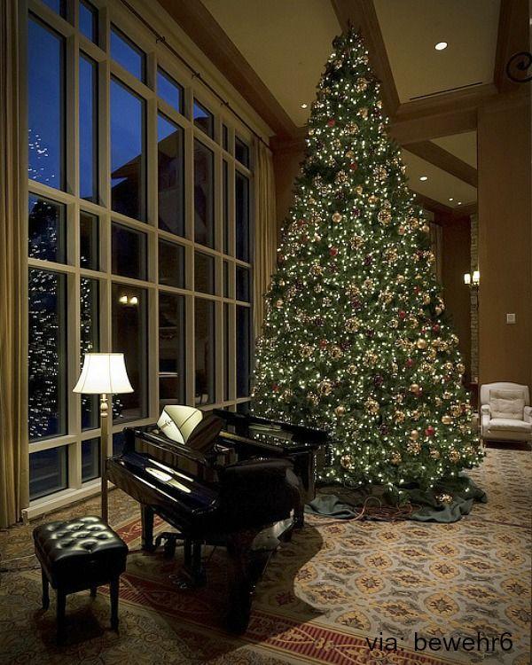Grand Christmas Tree: Black Grand Piano With Christmas Tree