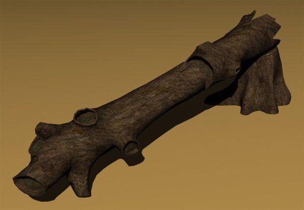 Pin by David Kang on CS188 Moodboard | Wood logs, Model, Wood