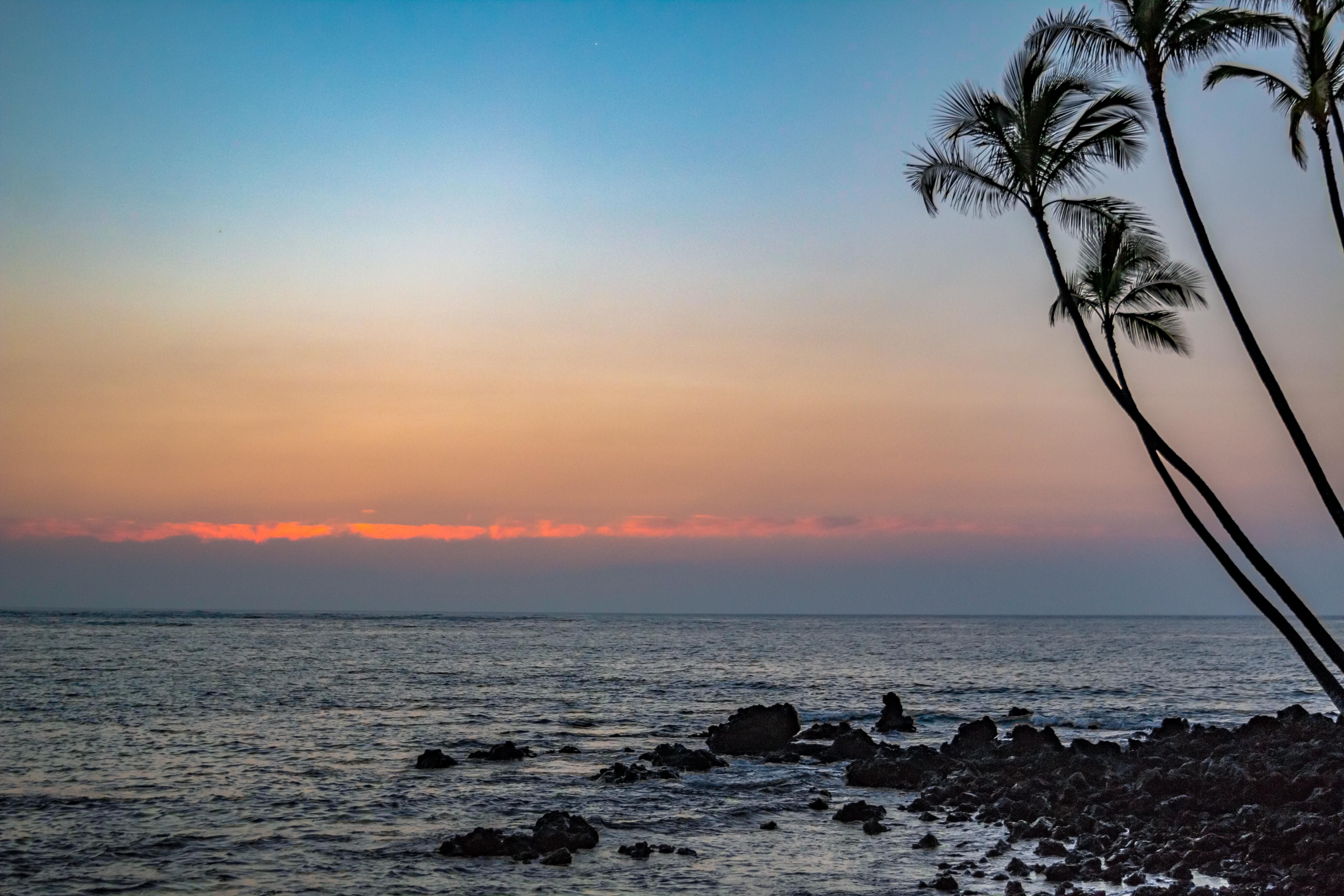 Hawaiian sunset oc x please check the website for more