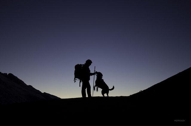 Quién estará disfrutando + el perro o el dueño?