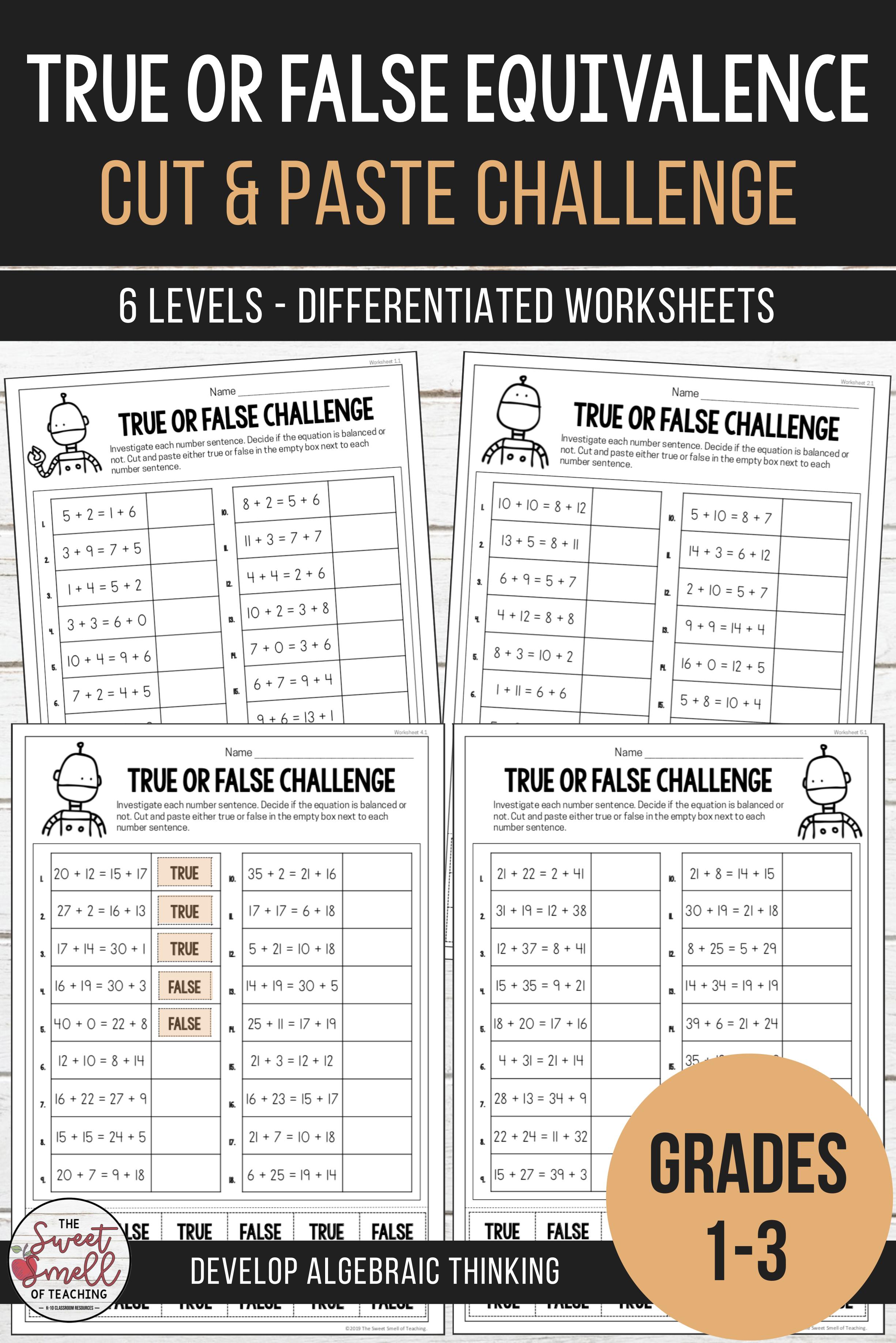 Balancing Equations True or False Equivalence Worksheets