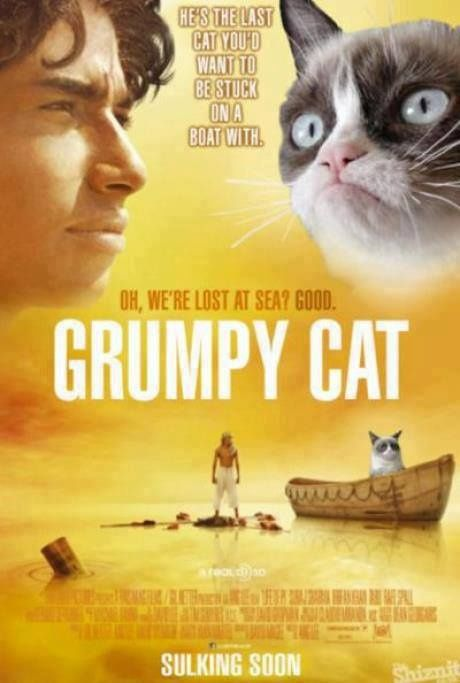 Grumpy Cat meme, Life of Pi ...For more funny pics and hilarious humor visit www.bestfunnyjokes4u.com/lol-funny-cat-pic/