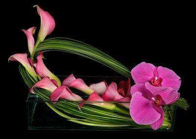3 texturas en 8-5-3. 8 de calas 5 de phalaenopsis 3 de verde