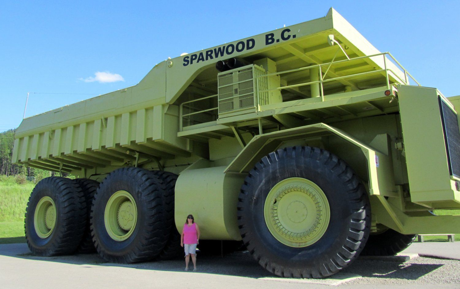 Biggest dump truck tires