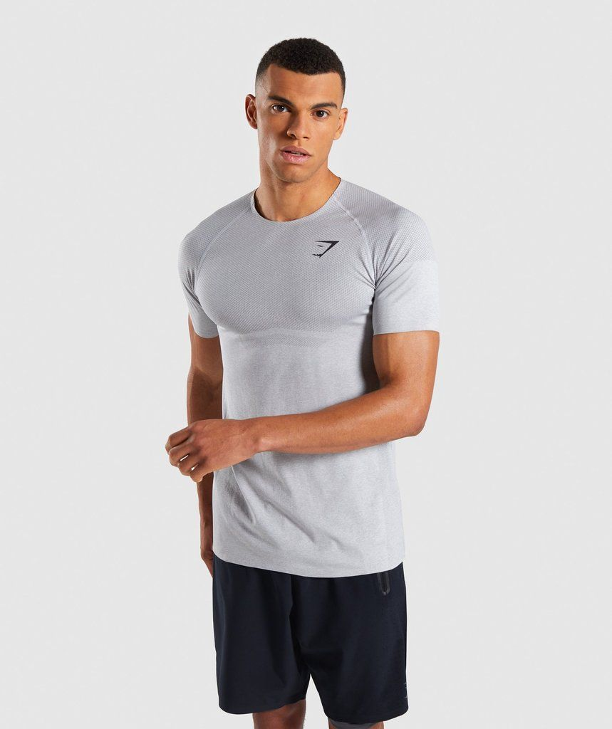 cb7ed8282066 Gymshark Shadow X Seamless T-Shirt - Light Grey Marl 1 | Gym i 2019 ...