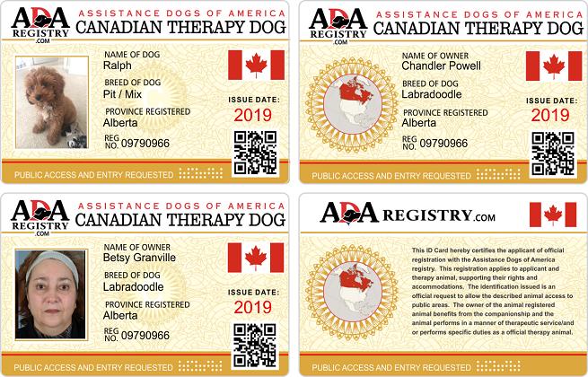 Canadian Gallery Service dog registration, Assistance