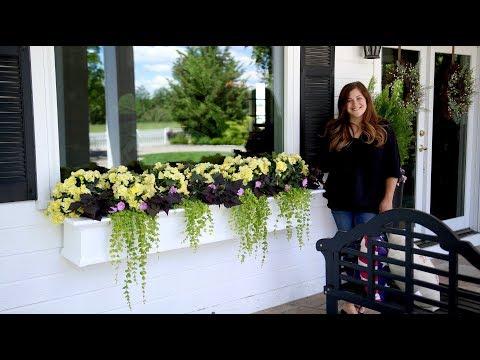 8 Gorgeous Shade Arrangement In Window Boxes Garden