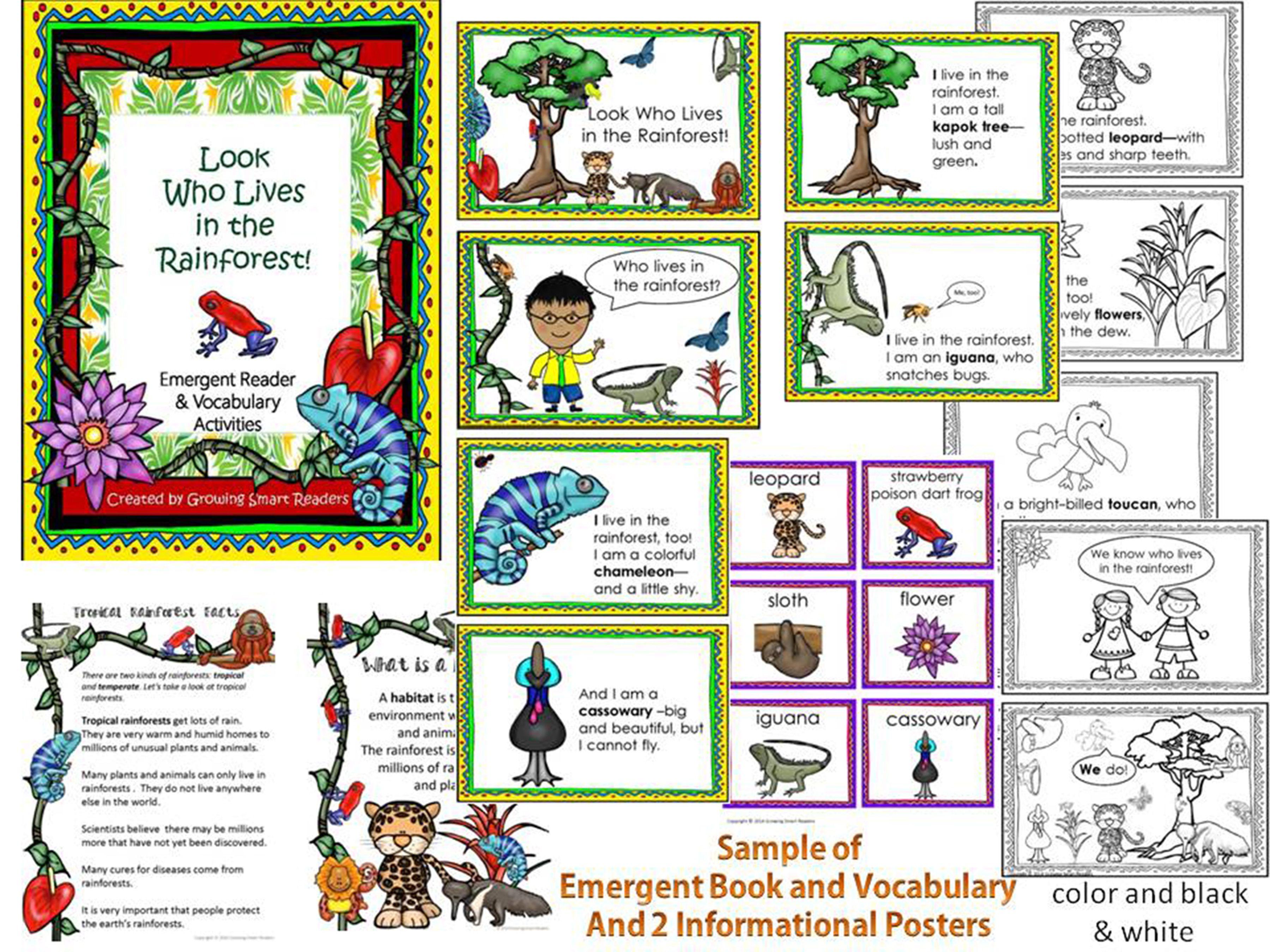 Rainforest Reader And Vocabulary