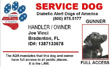 Diabetic Alert Dogs Of America Service Dog Id Diabetic Alert