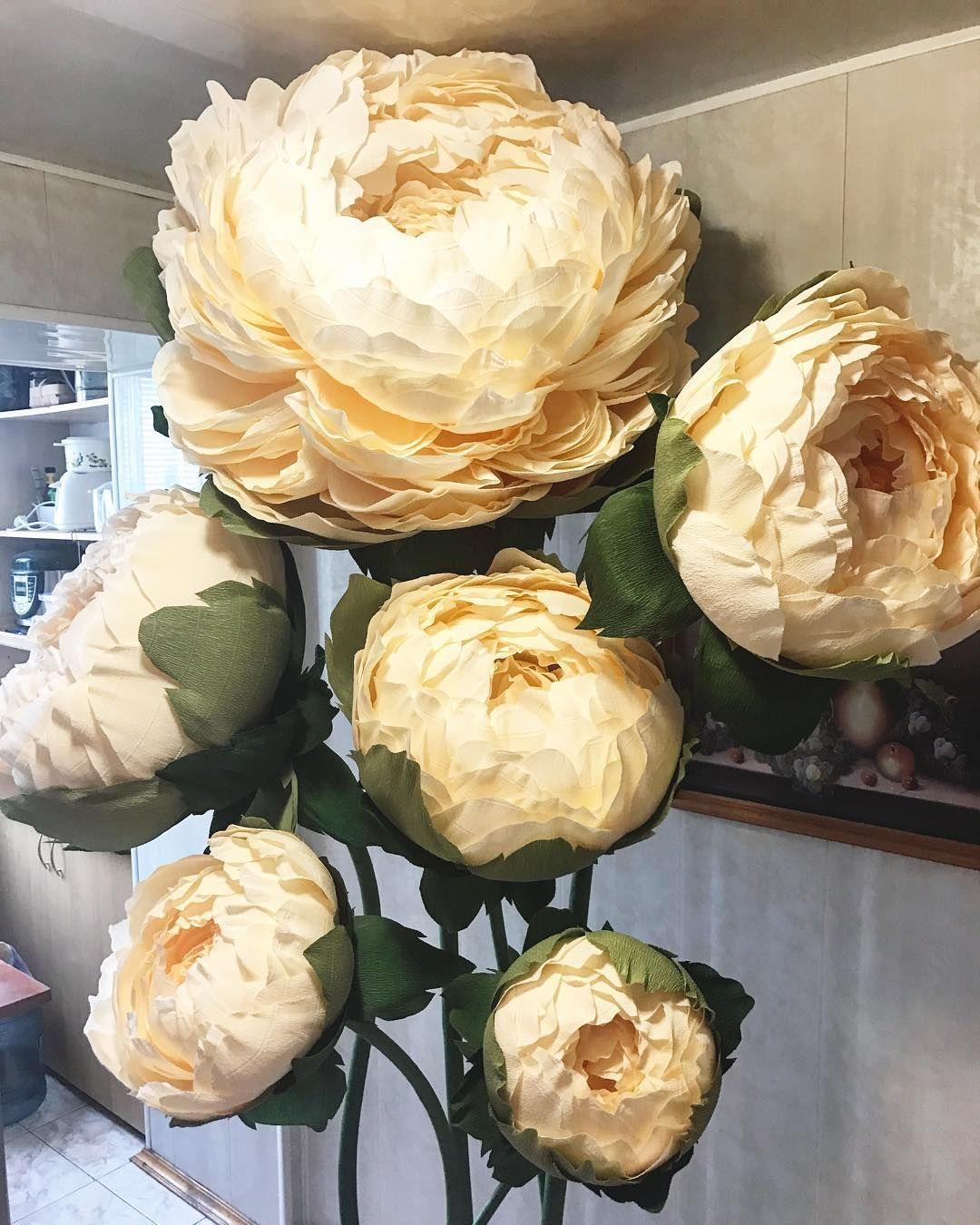 Wowpaperflowers Rostovyecvety Bumazhnyecvety Cvetykrasnodar