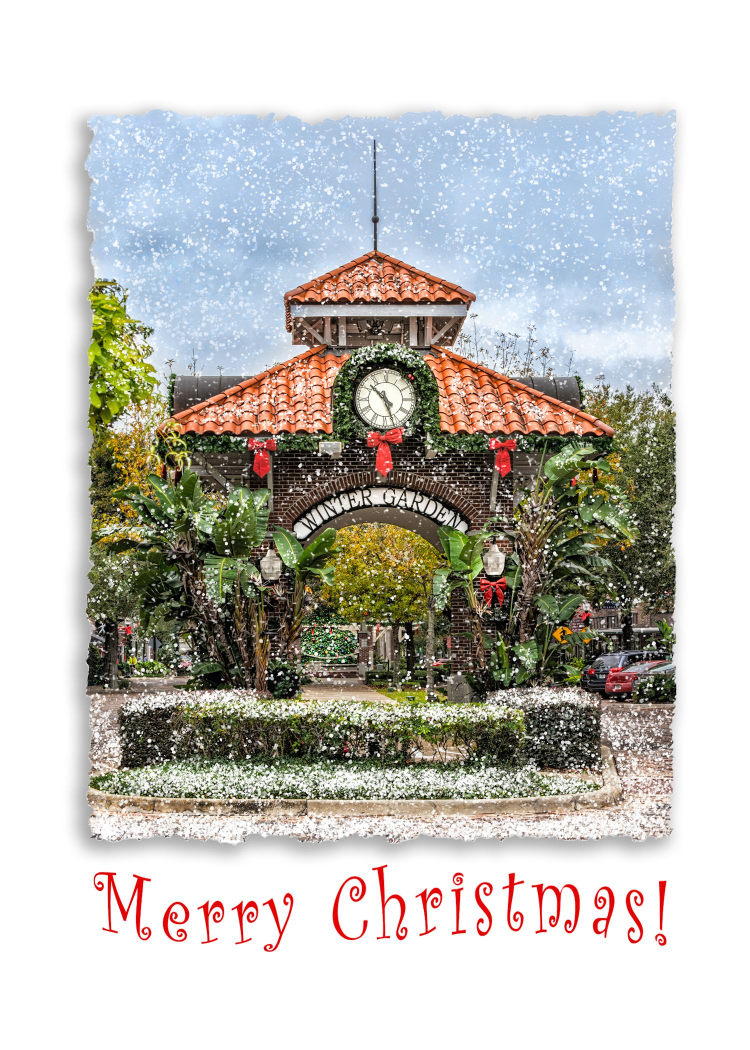 holiday anna cary photography notecards gardens of and local