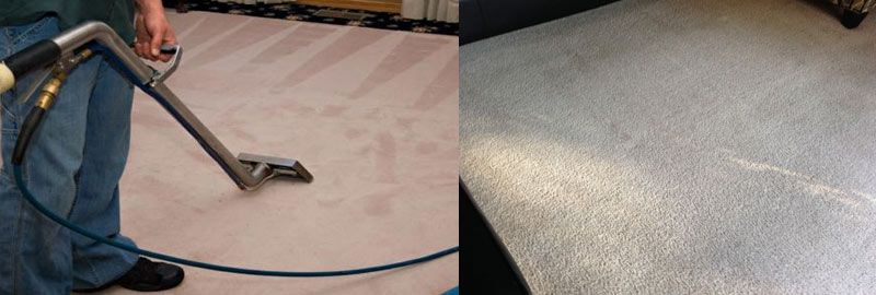 Carpet Cleaning Adelaide In 2020 How To Clean Carpet Steam Clean Carpet Carpet