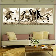 Animal canvas print other artists canvas set three panels ready to stretched canvas print art animal dashing horses set of 3 eur aloadofball Choice Image
