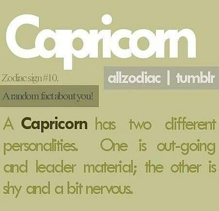 Capricorn' sayings and key-words