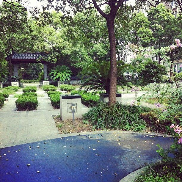 In-home mini park #Shanghai #China