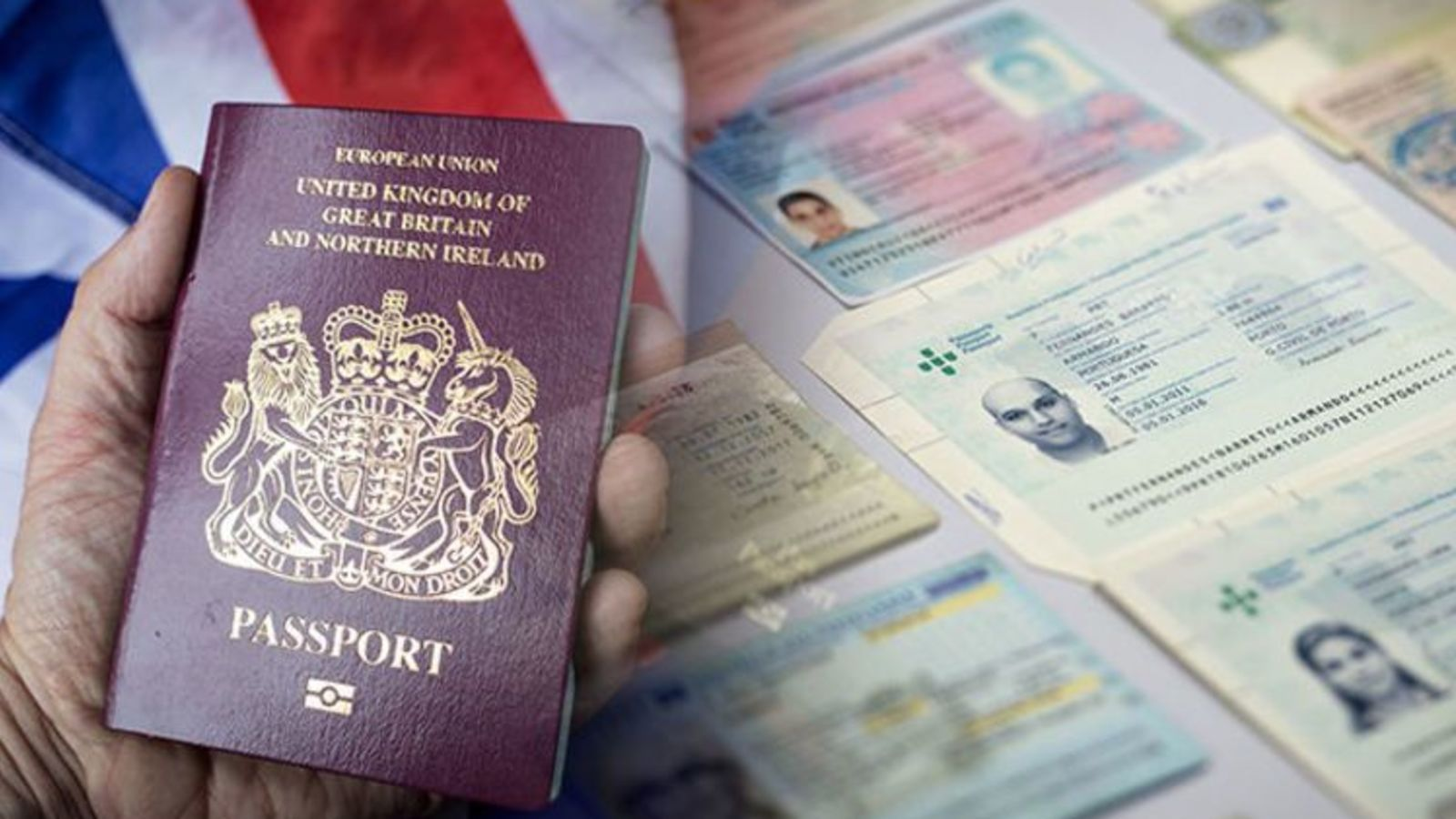 Here you will find a wide range of cheap fake id cards