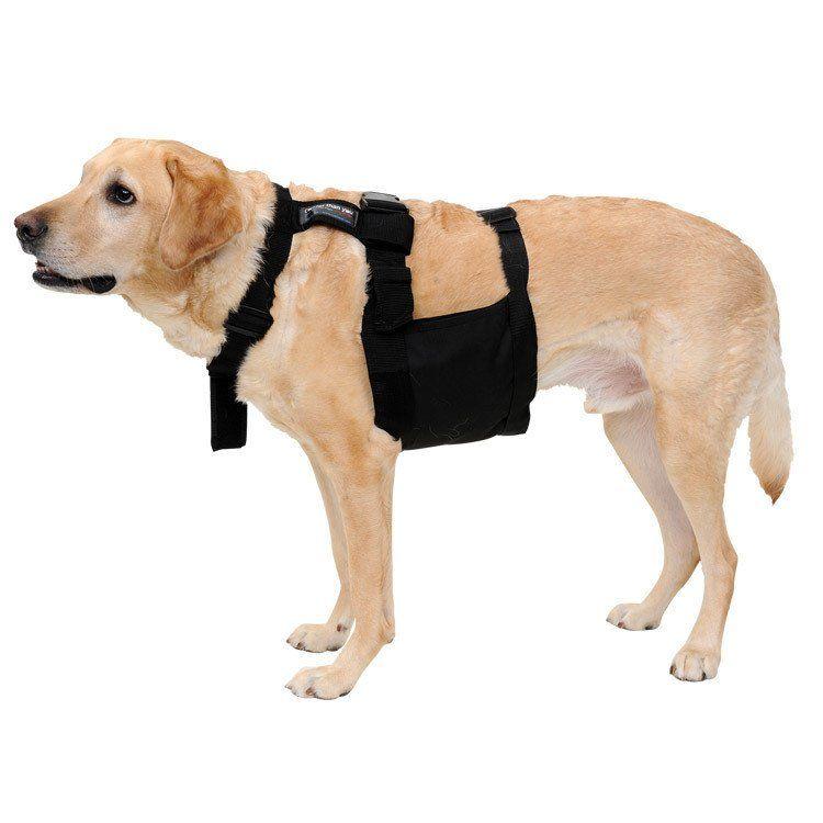 Glacier Tek Chilly Dog Cool Vest Black Includes Glacierpack Set