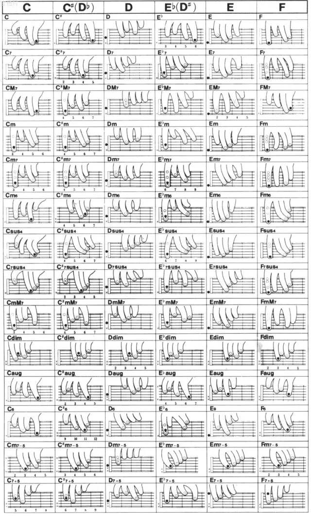 Finger Positions For Basic Guitar Chords Soothing The Savage Beast