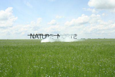 »nature morte« by rero (+)