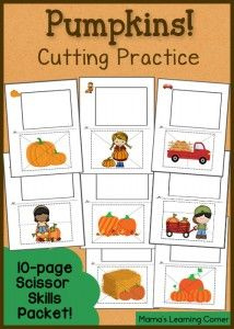 Studying Seeds Printable Mini Book Seed Chart And Vocabulary