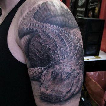 alligator tattoo stencils google search tat art pinterest alligator tattoo tattoo. Black Bedroom Furniture Sets. Home Design Ideas