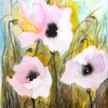 Pink Poppies V