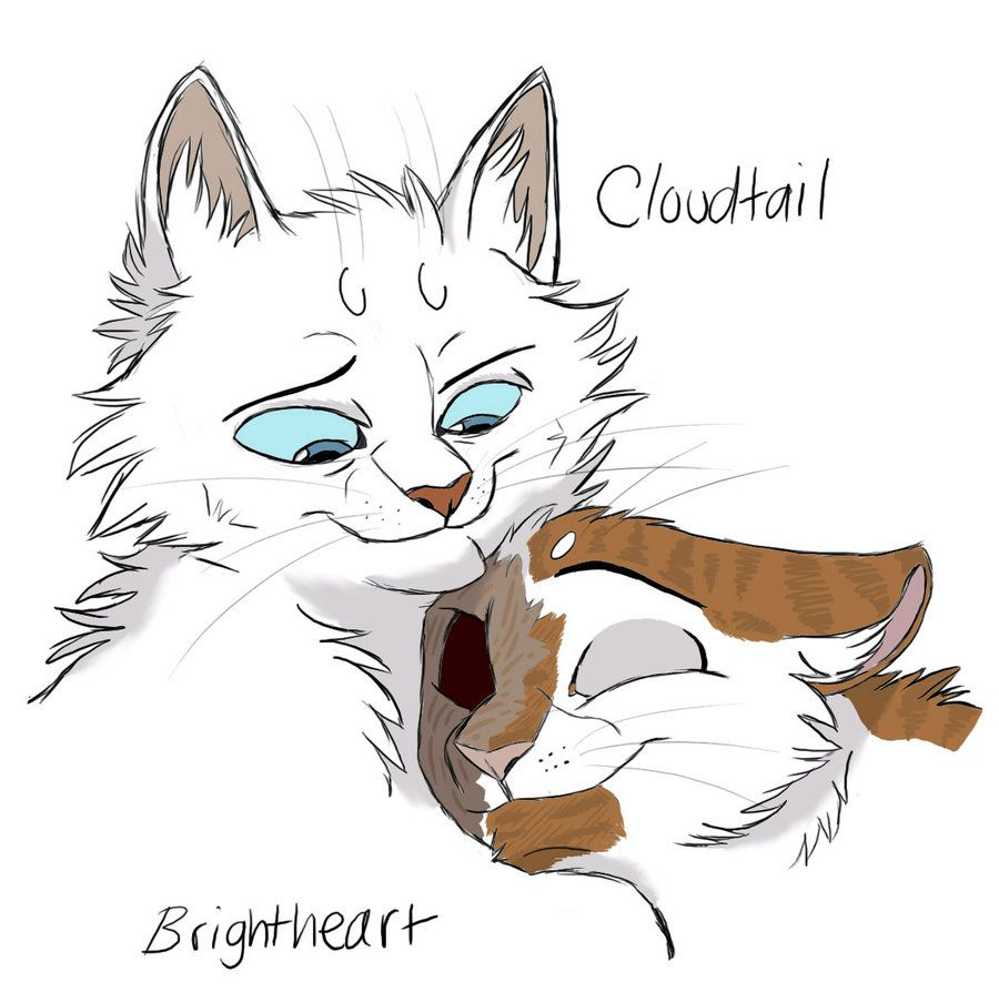 A Big Strong Warrior Cxb By Graystripe64 Deviantart Com On