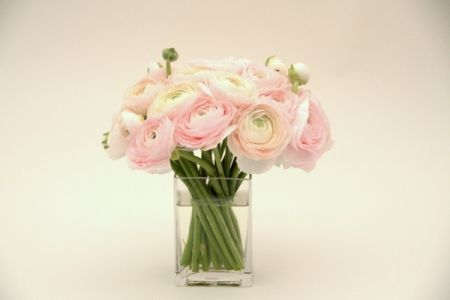The Elegance And Intricacy Of These Ranunculus Blossoms Is Simply Stunning In The Softest Pink Shade Available The Luxury Flowers Flower Delivery Flower Gift