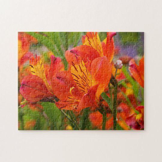 Orange Peruvian Lily Jigsaw Puzzle