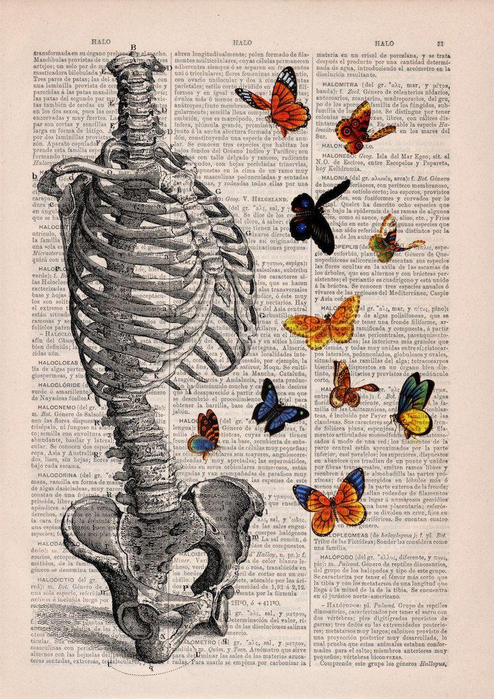 Maravillosas ilustraciones anatómico-florales dan nueva vida a las ...