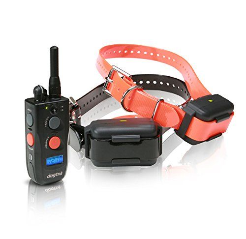 Dogtra 1902ncp Fieldstar Remote Training Collar 2dog System Read