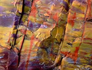 Petrified Wood, Arizona Mural - Danny Burk| Murals Your Way