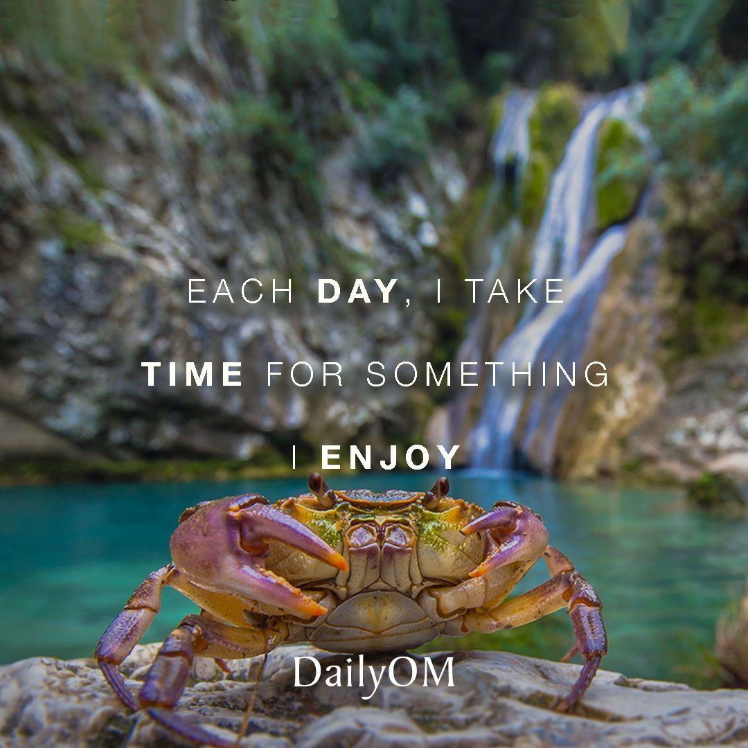 Dailyom Affirmation Quotes Enjoy Happiness Pleasure