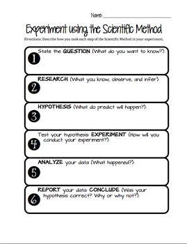 Scientific Method Worksheet Middle School Essay On The