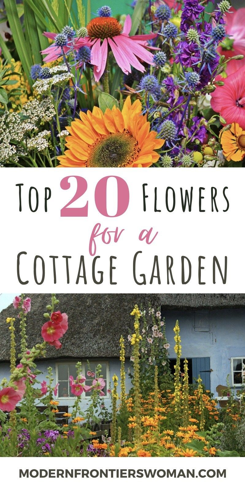 With height, bloom time and color in mind, you can create an enchanting cottage garden with ease. Your hard work will be repaid with a low maintenance masterpiece you can enjoy year after year. Plus your vegetable garden will thank you for all the added pollination it receives from the bees and butterflies that flock to your flowers.