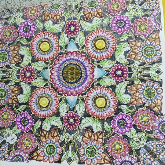Johanna Basford   Colouring Gallery   By SAKURA