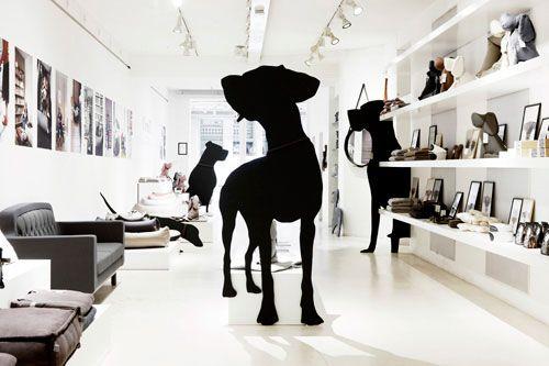 Content Unavailable Nordic Design Scandinavian Furniture Design Pet Store Design Dog Boutique