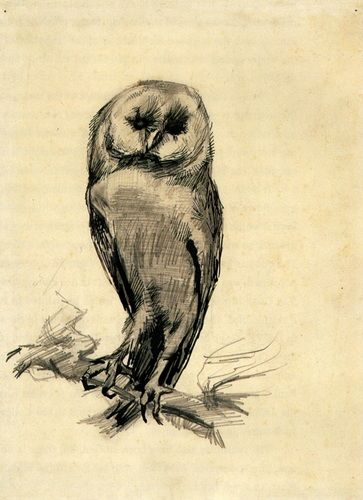 Barn Owl Viewed from the Front by Vincent van Gogh