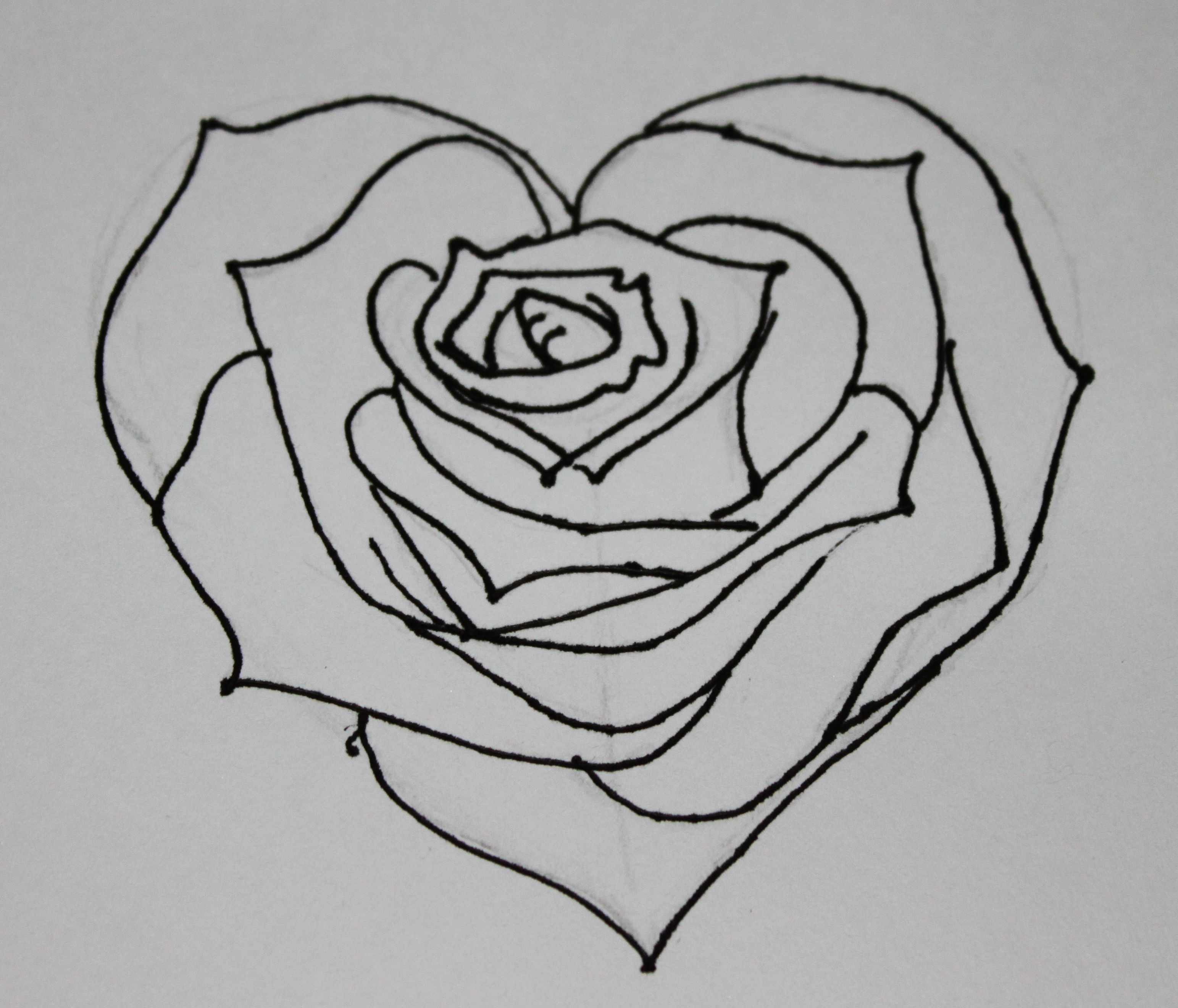 All about drawings discover many easy pencil drawings for Easy to draw roses for beginners