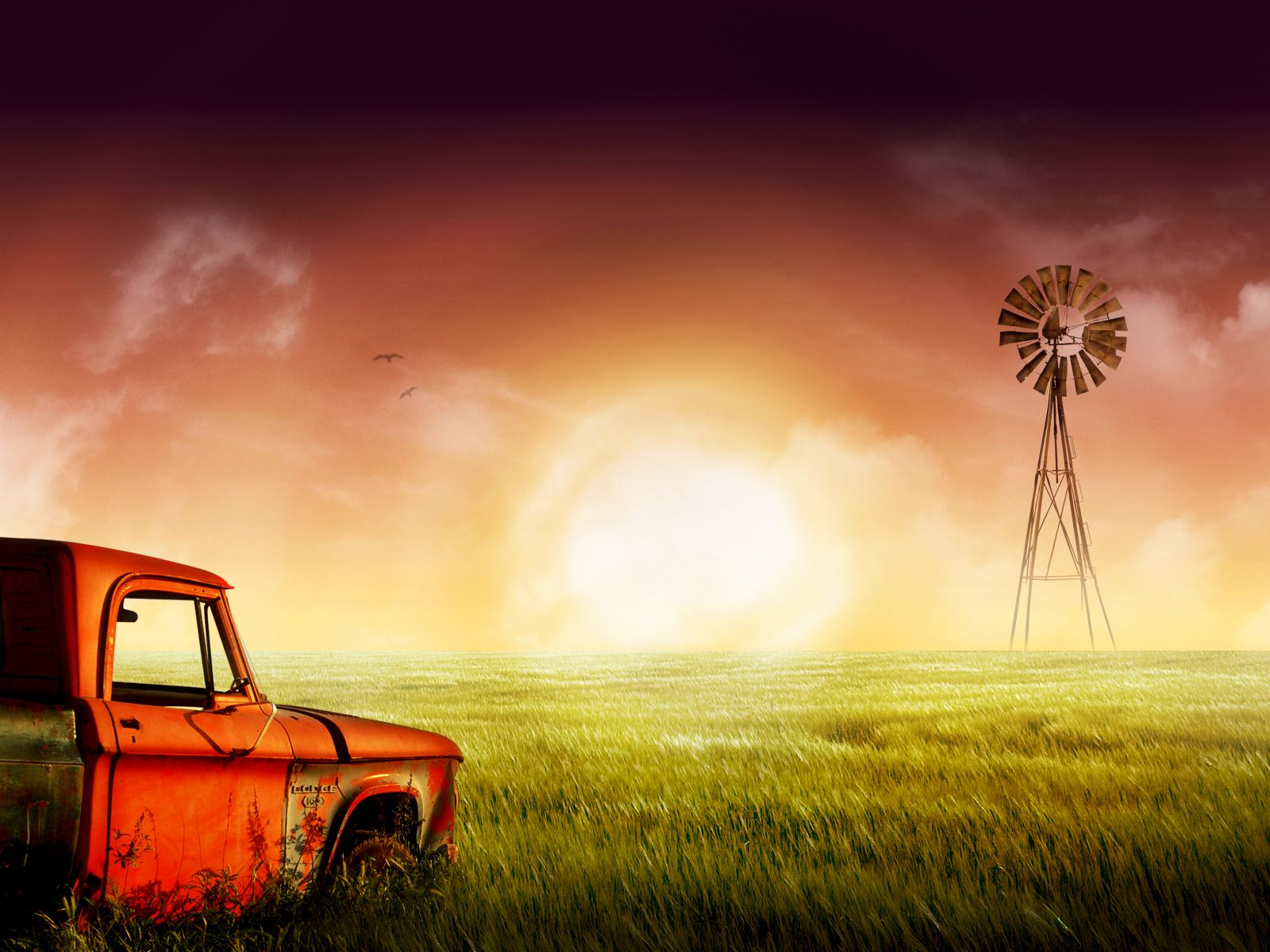 I M Not Much Of A Country Girl But Something About Old Trucks