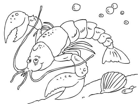 coloring in this lobster coloring page is a snap you can color in online - Lobster Coloring Page