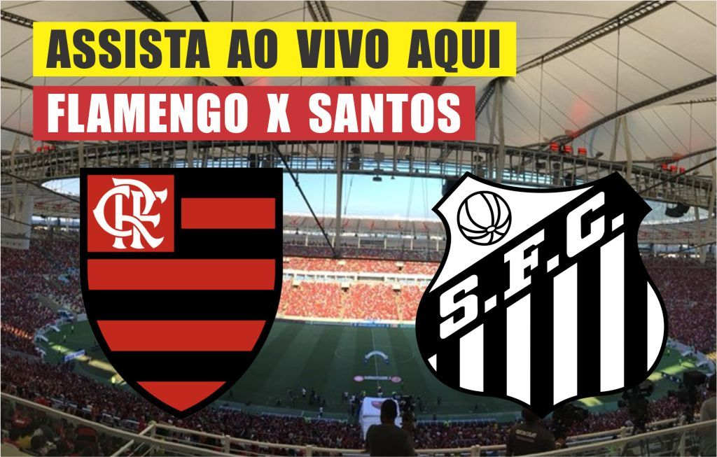 Assistir jogo do Flamengo 🔴Ao Vivo Online HD Brasileirão