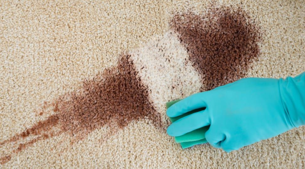 does coffee stain carpet