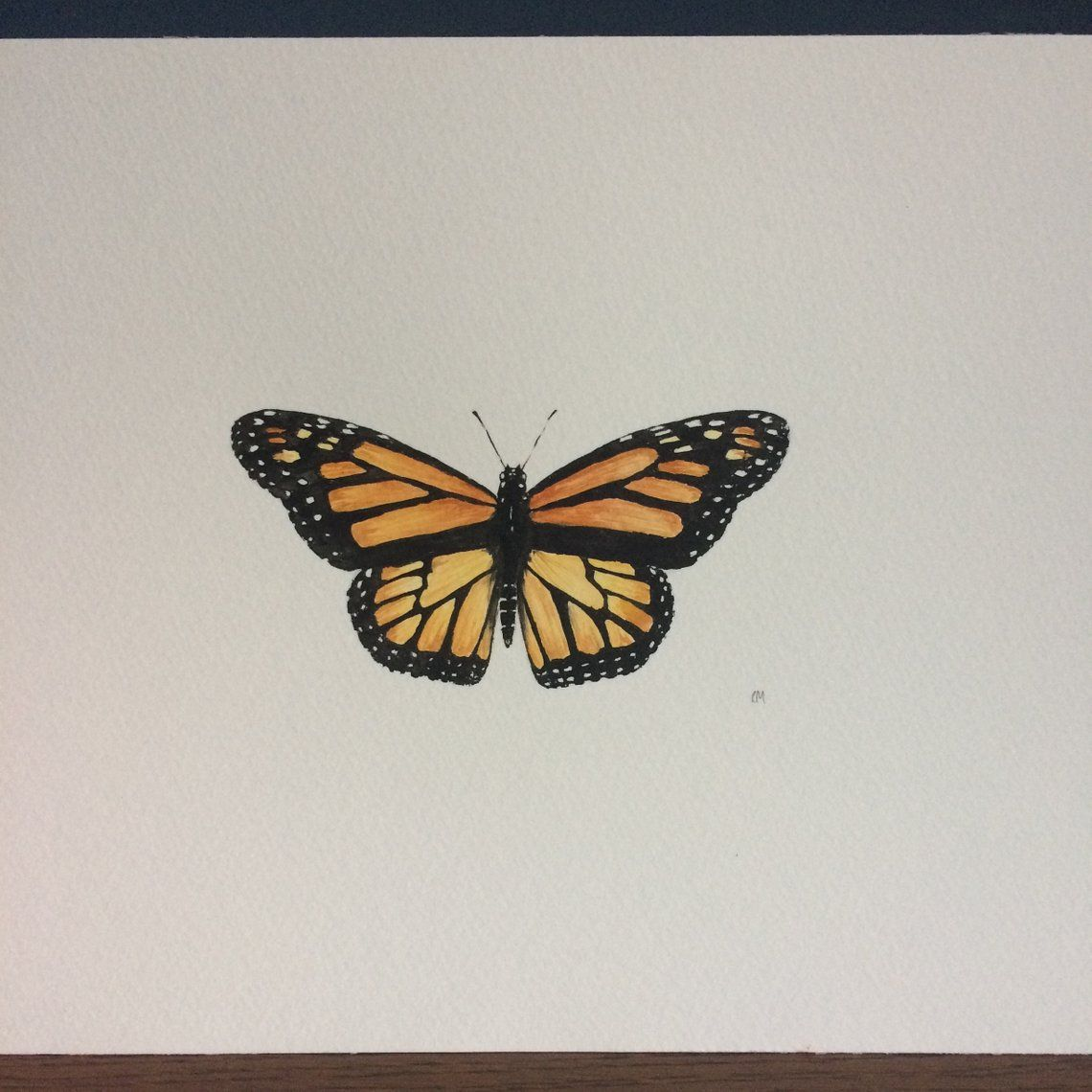 Original Watercolour Painting Monarch Butterfly Etsy