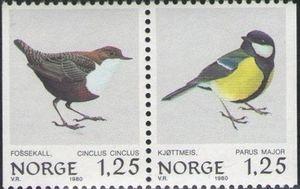 Cinclus cinclus, Parus major