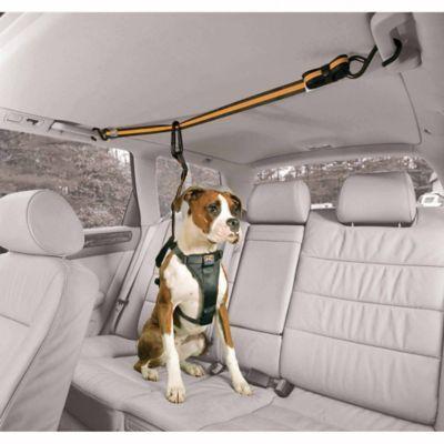 Kurgo Auto Zip Line With Leash Dogs Dogs Dog Hacks